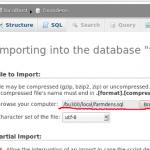 مشکل ایمپورت کردن دیتابیس های بزرگ و پر حجم در phpmyadmin