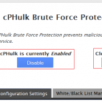 Brute Force Protection در Cpanel