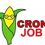 تعریف Cron در Cpanel
