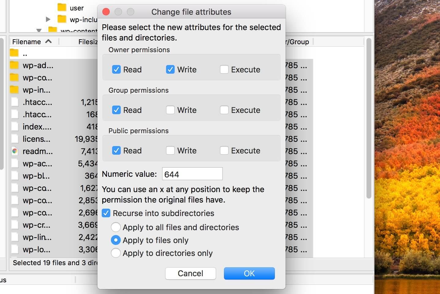 تنظیم مجوز فایل و پوشه در وردرپرس
