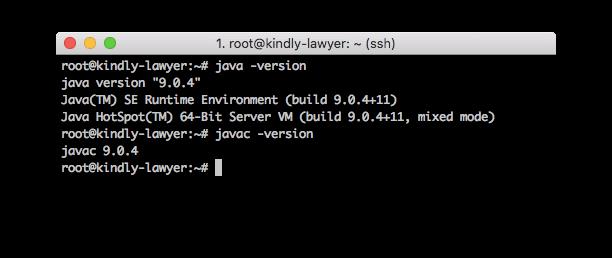 چک کردن نسخه جاوا روی سرور لینوکس
