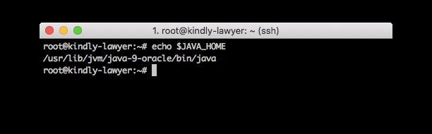 تغییر متغیرهای جاوا در سرور